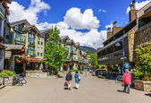 Whistler — Stock Photo