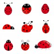 Stock Vector: Set of ladybugs