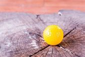 Yellow Miniature Golf Ball On White Background. — Stock Photo