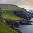 Green meadows and giant sea cliffs overlooking the ocean — Stock Photo #38758599