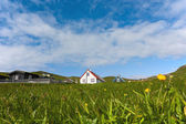 Remote village of Mykines, Faroe Islands, in a summer day — Stock Photo