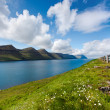 Stock Photo: Natural landscape of Faroe Islands