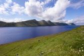 Fjord entouré par des montagnes vertes — Photo