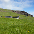 Stock Photo: Faroe islands green landscape