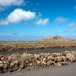 Lanzarote, Canary Islands. Volcanic landscape in a sunny day — Stock Photo