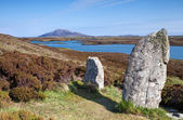 Standing stones at Pobull Fhinn, Isle of North Uist — Stock Photo