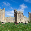 Stock Photo: Bodiam Castle, Sussex, England