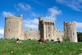Bodiam Castle, Sussex, England — Stock Photo