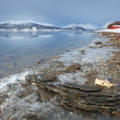 Fjord shore in arctic Norway — Stock Photo #41683117