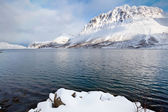 Norwegian fjord surrounded by snow mountains — 图库照片