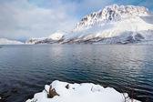 Norska fjord omgiven av snö berg — Stockfoto