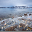 Fjord Shore In Arctic Norway — Stock Photo #41988349