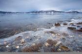 Margem do fiorde na noruega ártica — Foto Stock