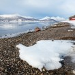 Fjord shore, natural winter landscape in northern Norway — Stock Photo