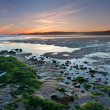 Low tide beach at sunset — Stock Photo