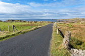 Empty road running through Donegal coast — Stock Photo
