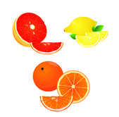 Citrus fruits in vector, orange, lemon and grapefruit — Stock Vector