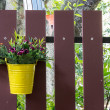 Stock Photo: Flower Bucket Over A Fence