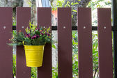 Flower Bucket Over A Fence — Stock Photo