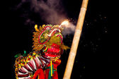 Acrobats are performing a lion and dragon dance — Stock Photo