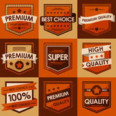 Set of retro vintage badges and labels. Flat Style — Stock Vector