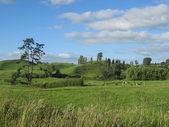 Green Hills of New Zealand — Stock Photo