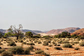 Landscape in Namibia — ストック写真