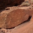 Rock Engravings in Twyfelfontein — Stock Photo