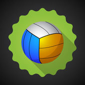 Sport Ball Voleyball — Stock Vector