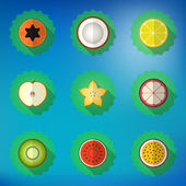 Fruit Flat Icon Set. — Stock Vector