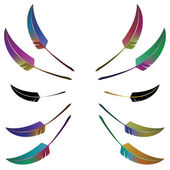 Set of 10 colorful feathers — Vettoriale Stock