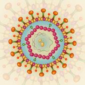 Hepatitis b-virus. hintergrund. eps 10. — Stockvektor