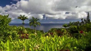 Garden Of Eden, Timelapse, Maui, Hawaii, USA — Stockvideo
