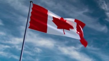 Canada Flag, animated on different backgrounds — Stock Video