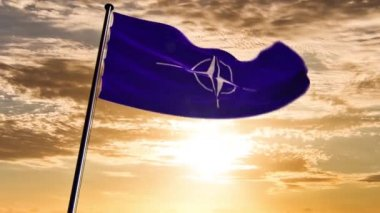 NATO Flag, animated on different backgrounds — Video Stock