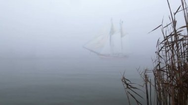 Sailboat in full sail comes up out of fog — Stock Video