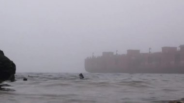 Barge port on river fog ship Autumn water — Stok video