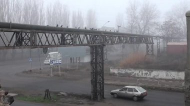 Metal Farm at crossroads in fog autumn — Vidéo