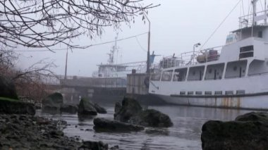 Passenger ships are at berth in fog on river autumn — Stock Video