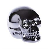 Glossy Metallic Skull — Stockfoto