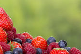 Assorted berries — Stock Photo