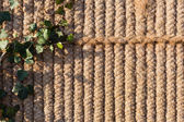 Sack knitted background with ivy — Stock Photo