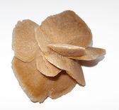 Rosa de areia do sahara — Fotografia Stock