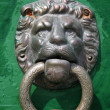 Stock Photo: Gilded lion head door knob