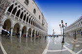 St. Mark's square in Venice — Foto de Stock