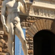 Stock Video: David of Michelangelo in Florence