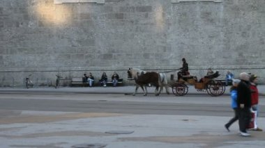 Horse driven carriage with tourists, Salzburg — Stock Video