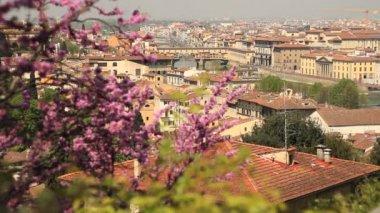 Florenz-Stadtansicht — Stockvideo