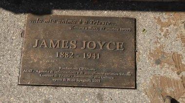 James Joyce statue — Stock Video