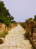 Ruins of Leptis Magna, Libya - Roman Road — Stock Photo